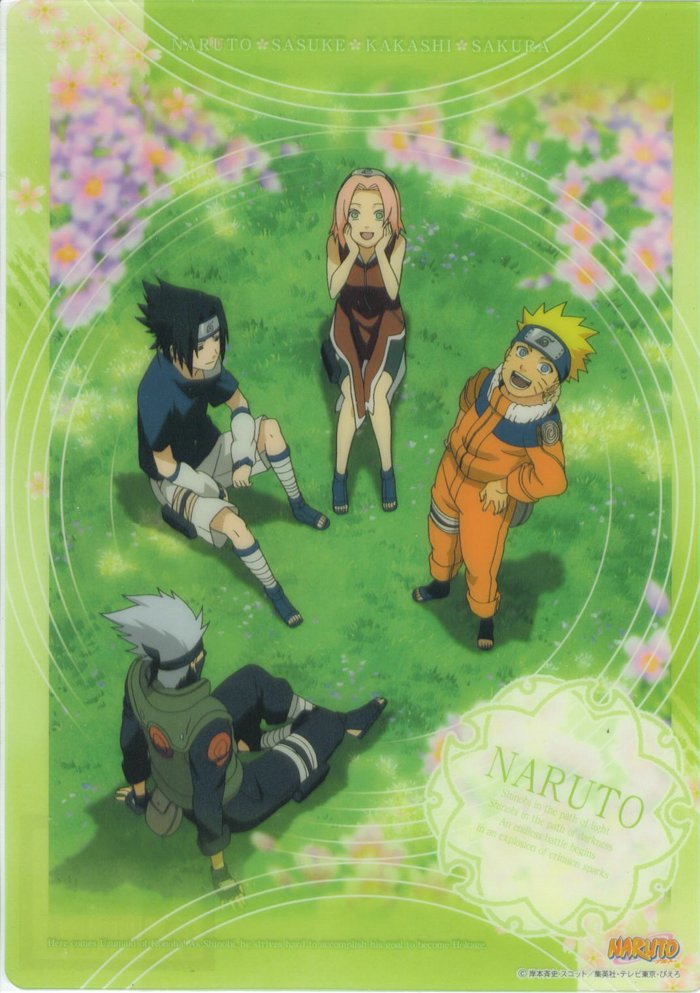 Team 7 has a picnic
